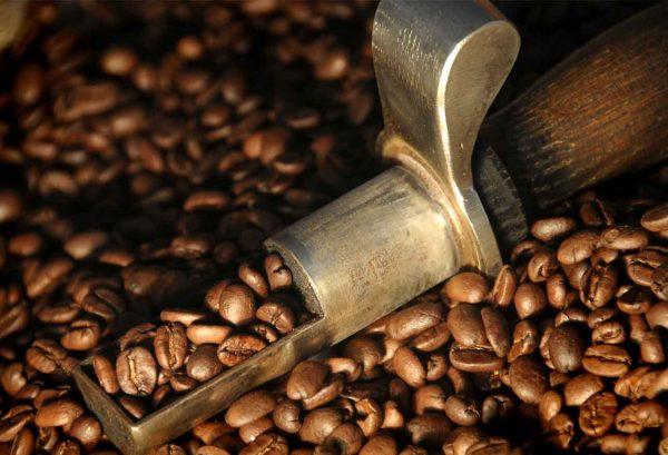 ventimetriquadri speciality coffee