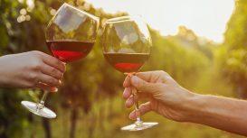 Come nasce il nome di un vino? 5 etichette di Cannonau da conoscere
