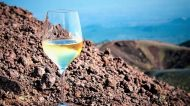 Only Wine: a giugno, il mondo del vino riparte da Città di Castello