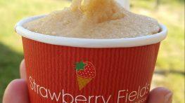 Strawberry Fields: il gelato buono e sano di Geppy Sferra