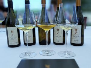Wine tasting experience: degustazione in vigna da Ômina Romana dove le grandi ambizioni diventano realtà