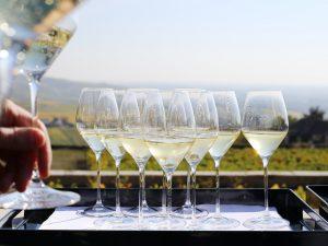 Académie du Champagne: il 3 dicembre è la giornata di Alta formazione sullo Champagne