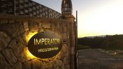 Cantina Imperatori: a Frascati l'azienda vinicola tra sostenibilità e design