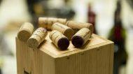 Terre di Toscana: i vini toscani scendono in campo