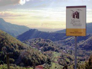 Azienda Agricola Monte di Grazia alla scoperta degli autoctoni campani