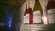I vini ancestrali arrivano in Sicilia