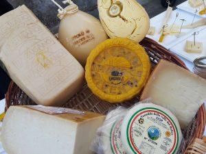 """Canestrum casei, """"sostanze nutrizionali uniche nei formaggi del Sud"""""""