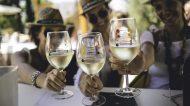 È di nuovo tempo di Mandrarossa Vineyard Tour tra natura, vini e cibo del menfishire