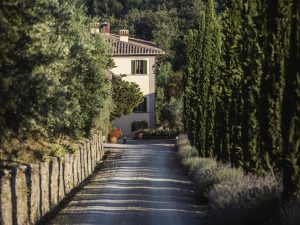 Dievole: la nuova meta dell'estate è il wine resort con esperienza benessere