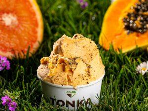 Tonka & Treedom: il gelato artigianale di Aprilia con il gusto in più per il Green Marketing