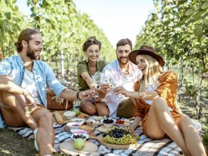 Cantine Aperte in Vendemmia, Picnic in Cantina e degustazioni: gli eventi autunnali per i turisti del vino a Torino e in Piemonte
