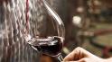 Milano. Inaugura Cantina Urbana dove produrre e bere vino in città