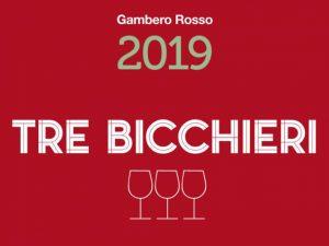 Vini d'Italia 2019, la guida alle migliori etichette firmata Gambero Rosso