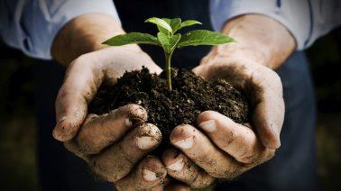 Molise: nasce un Hub internazionale Bio e Dinamico 100% italiano