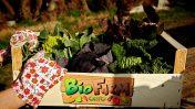 Roma: arriva BioFarm Orto