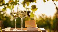 Campania100: i vitigni autoctoni campani alla ribalta