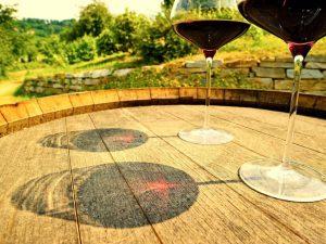 Collisioni 2019: musica, cultura, vini e cibo di qualità a Barolo