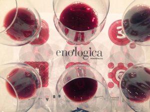 Enologica Montefalco, 25 anni di DOCG