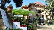 Zagara d'Autunno, all'Orto botanico di Palermo un focus su olio e olive