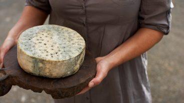 E' norvegese il formaggio migliore al mondo