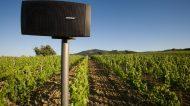 Paradiso di Frassina: il vino a suon di musica