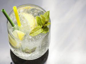 La festa del Gin Tonic