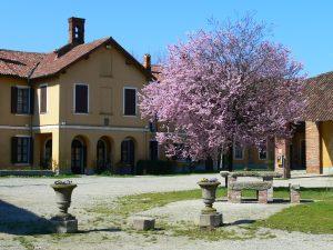 Festa del Raccolto alla Cascina Guzzafame di Gaggiano