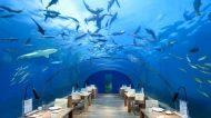 Il ristorante subacqueo più grande al mondo