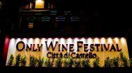 Only Wine Festival: il salone delle piccole cantine d'Italia