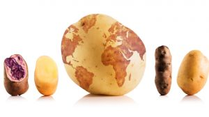 Da Eataly Roma c'è la Festa della Patata