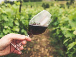 Wine Sicily, a Palermo tre giorni dedicati alle cantine siciliane negli spazi del Museo Riso