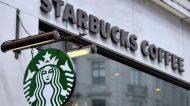 Palme e Banani a Milano per l'arrivo di Starbucks