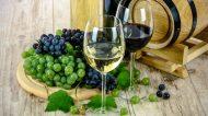10 vini veneti da non perdere per salutare il 2020
