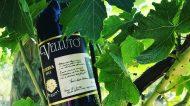 """Vino: Cantina Meroni e il """"Velluto"""" di Amarone"""