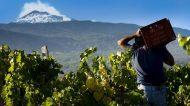 Al via Etnamade, focus sui vini e i prodotti del Vulcano a Catania