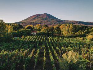 Vigne, lapilli e Pietrafumante: il Metodo Classico di Casa Setaro racconta il Vesuvio Autoctono Dosage Zéro