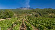 Spumanti dell'Etna, a Catania torna l'evento dedicato alle bollicine del Vulcano