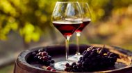 Assisi: tornano i vini secondo natura con ViniVeri