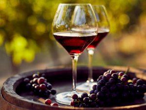 Roma Doc, al debutto la nuova Guida ai vini di Repubblica