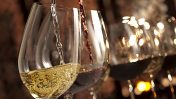 Febbraio 2019: gli appuntamenti imperdibili del mese tra vino e cibo di qualità